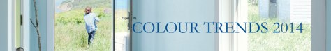 colour trends banner